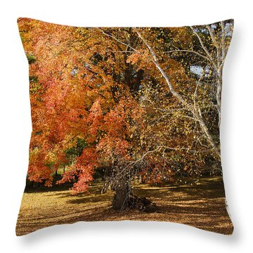 Michigan Autumn 1 Throw Pillow