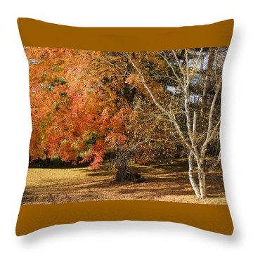 Michigan Autumn 1 Throw Pillow