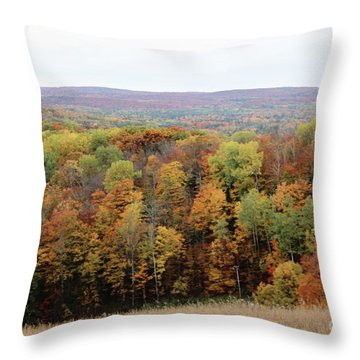 Michigan Autumn Throw Pillow