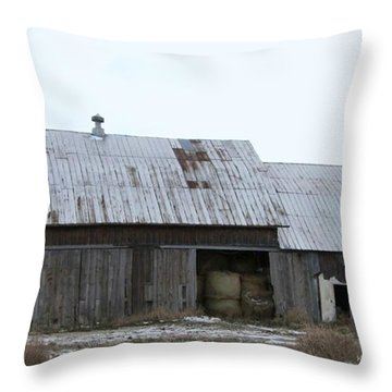 Michigan Barn Throw Pillow