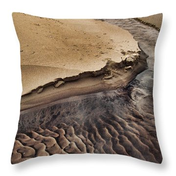 Michigan Beachscape Throw Pillow