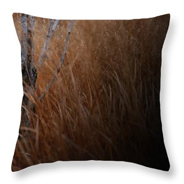 Michigan Throw Pillow by Linda Shafer