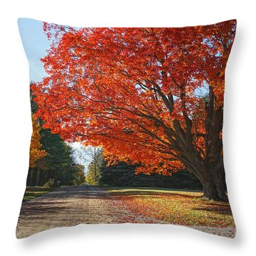 Michigan Spellbound Throw Pillow