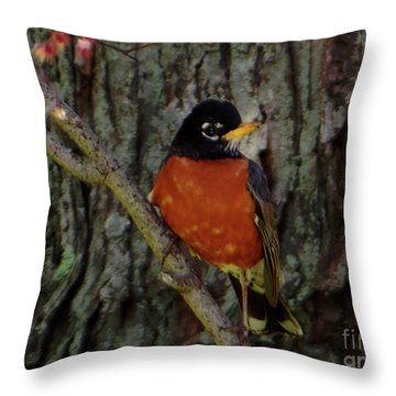 Michigan State Bird Robin Throw Pillow