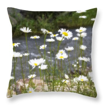 Mickelson Trail Daisies Throw Pillow