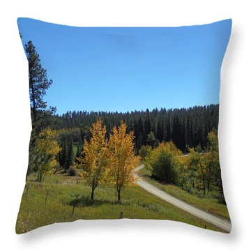 Mickelson Trail Throw Pillow