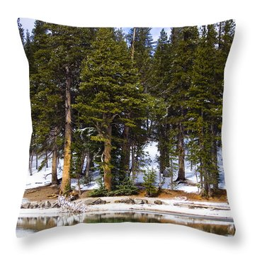 Mid Day Melt Throw Pillow by Chris Brannen
