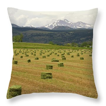 Mid June Colorado Hay  And The Twin Peaks Longs And Meeker Throw Pillow by James BO  Insogna