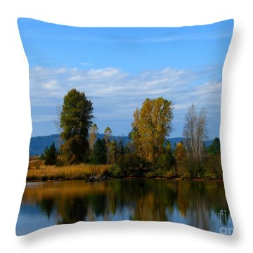Mid Morning Coffee Throw Pillow by Greg Patzer