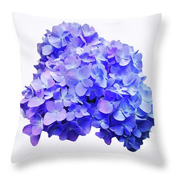 Throw Pillow featuring the photograph Mid-summer Blue by Roger Bester
