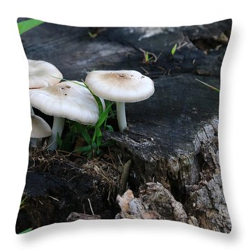 Mid Summers Fungi Throw Pillow