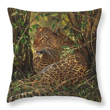 Midday Siesta Throw Pillow
