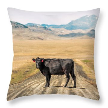 Middle Of The Road Throw Pillow by Todd Klassy