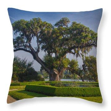 Middleton Oak Throw Pillow by Patricia Schaefer