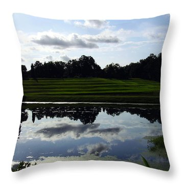Middleton Place II Throw Pillow by Flavia Westerwelle