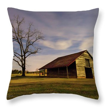 Midnight At The Mule Barn Throw Pillow