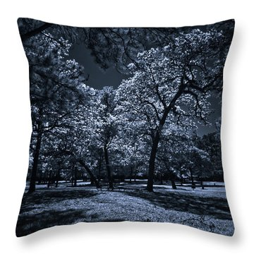 Throw Pillow featuring the photograph Midnight Blues by Linda Unger