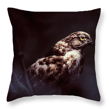 Midnight Hawk Throw Pillow