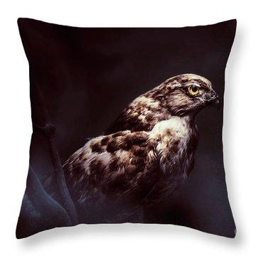 Midnight Hawk Throw Pillow