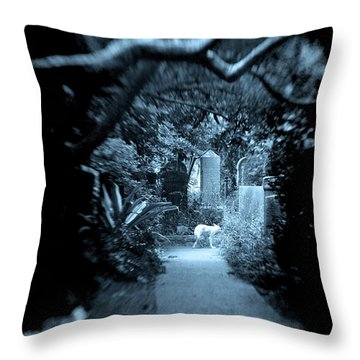 Midnight In The Garden O Throw Pillow