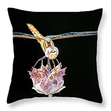 Midnight Landing Throw Pillow by AJ  Schibig