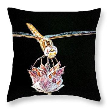 Throw Pillow featuring the photograph Midnight Landing by AJ  Schibig