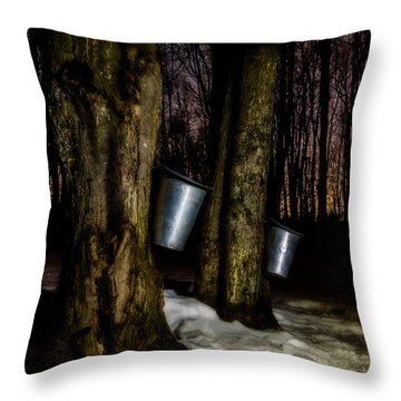 Midnight Sugar Throw Pillow