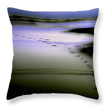 Throw Pillow featuring the photograph Midnight Swim by Gray  Artus