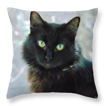 Midnite Throw Pillow