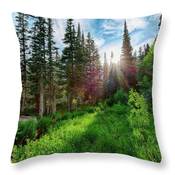 Throw Pillow featuring the photograph Midsummer Dream by David Chandler