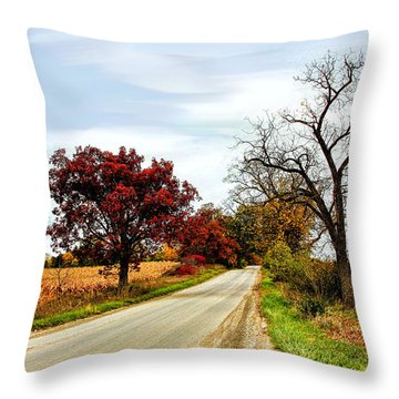 Midwest Autumn  Throw Pillow by Pat Cook