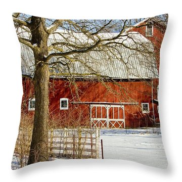 Midwest Barn Throw Pillow by Pat Cook