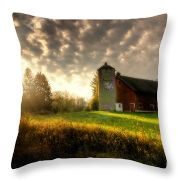 Midwest Morning Throw Pillow by Joel Witmeyer