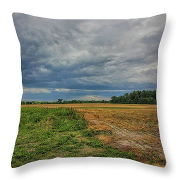Midwest Weather Throw Pillow