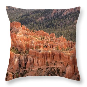 Mighty Fortress Throw Pillow