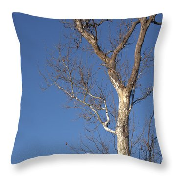Mighty Tree Throw Pillow
