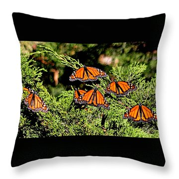 Throw Pillow featuring the photograph Migrating Monarchs by AJ Schibig