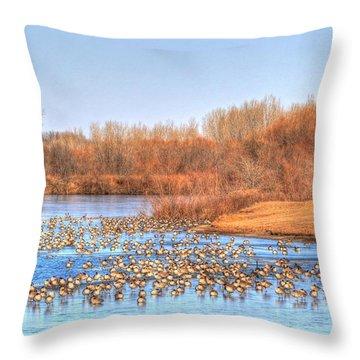 Migration Break On Ice Throw Pillow