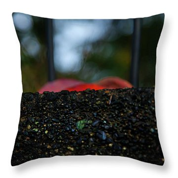 Throw Pillow featuring the photograph Miksang 2 Autumn Rain City by Theresa Tahara