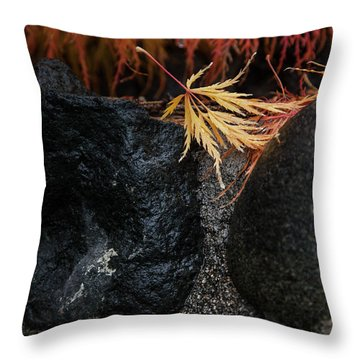 Throw Pillow featuring the photograph Miksang 5 Autumn by Theresa Tahara