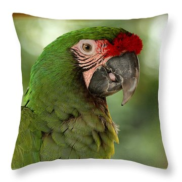 Military Mccaw Throw Pillow by Sheila Brown