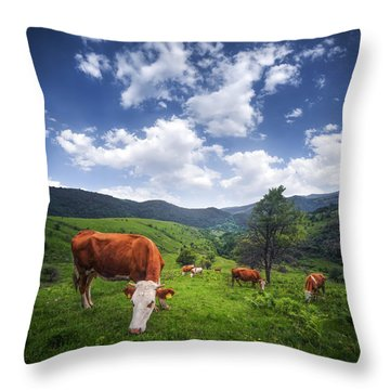 Throw Pillow featuring the photograph Milka by Bess Hamiti