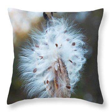 Throw Pillow featuring the digital art Milkweed And Its Seeds by Chris Flees