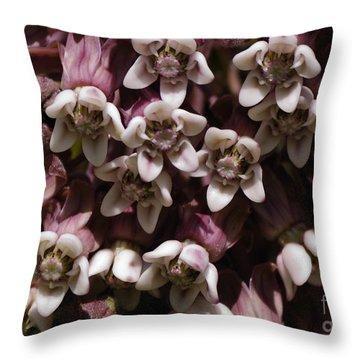 Milkweed Florets Throw Pillow