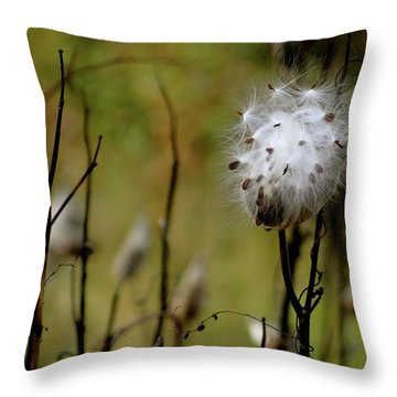 Milkweed In A Field Throw Pillow