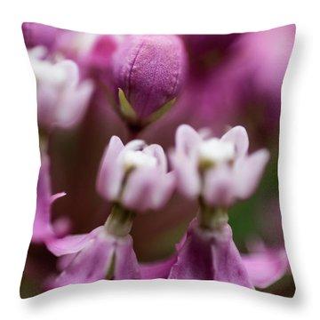 Milkweed Macro Throw Pillow