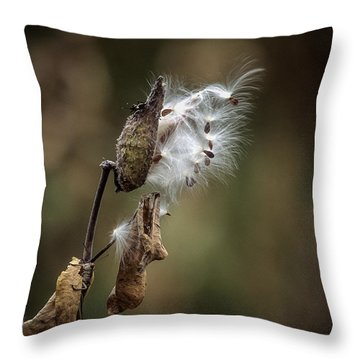 Milkweed Plant Dried And Blowing In The Wind Throw Pillow