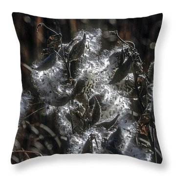 Milkweed Plant Dried Seeds  Throw Pillow