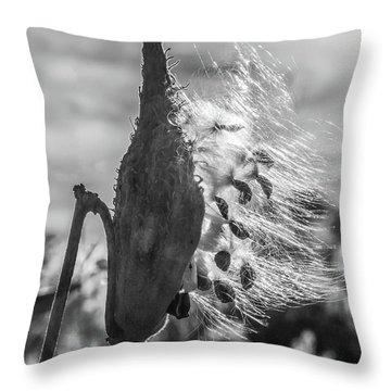 Milkweed Pod Back Lit B And W Throw Pillow