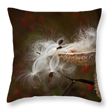 Milkweed Pods Throw Pillow by Elsa Marie Santoro